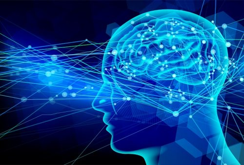 人工脳が自動車を運転する未来